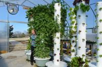 vertical-farming1